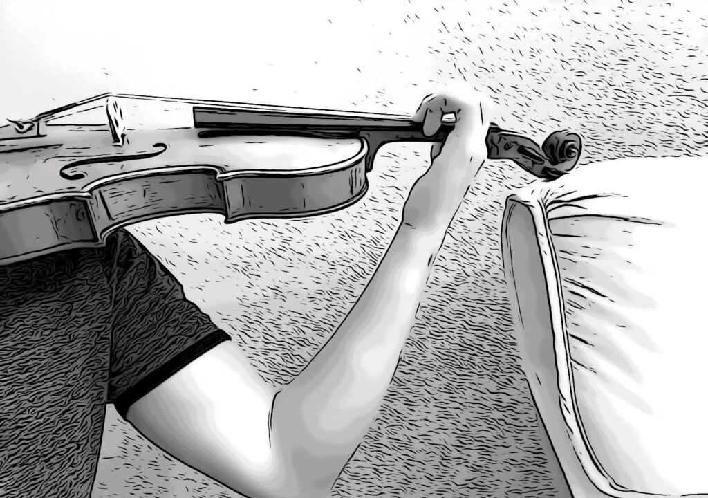 Hard support for the violin