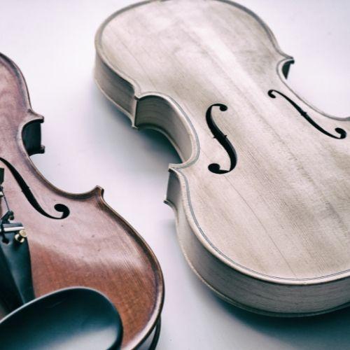 violin wood