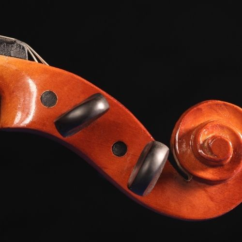 violin peg box