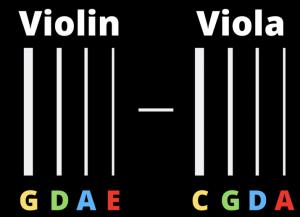 Viola vs viola strings